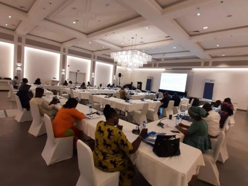 Two days Seminar on Capacity Building for the House of Representatives ' Committee on Diaspora (5)